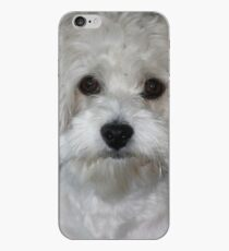 havanese white iPhone Case