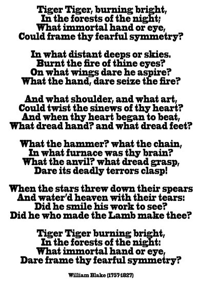 tiger tiger burning bright in the forest of the night