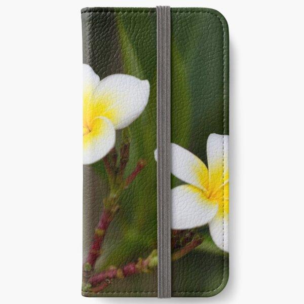 Frangipani leelawadee flowers iPhone Wallet