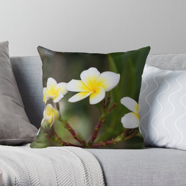 Frangipani leelawadee flowers Throw Pillow