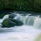 Aysgarth Falls #3 by Trevor Kersley