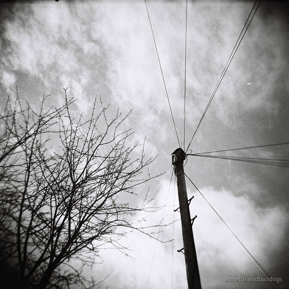 wires by annette andtwodogs