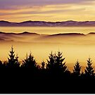 The Clouds........Black Forest by Imi Koetz