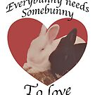 Everybunny needs somebunny 2 love by KMorral