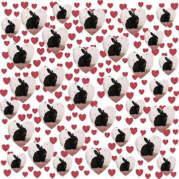 Bunny hearts by KMorral