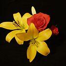 Floating Flowers by Kimberley Davitt