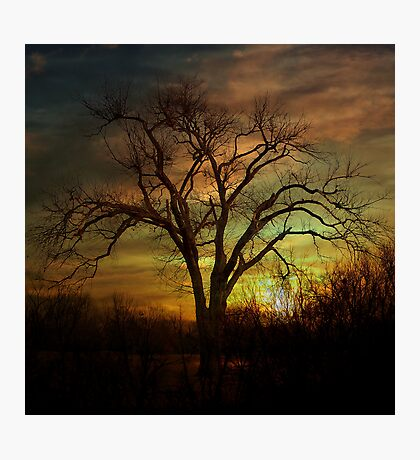 A Winters Night Photographic Print