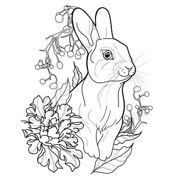 Bunny by cophine324b21