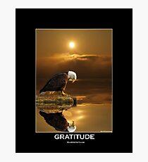 """Gratitude"" Bald Eagle Photographic Print"