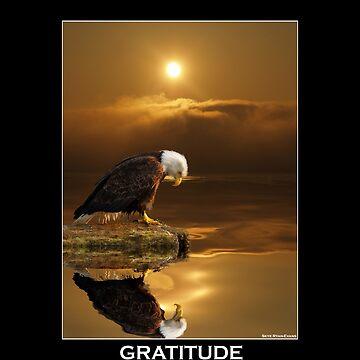 """Gratitude"" Bald Eagle by RavenPrints"