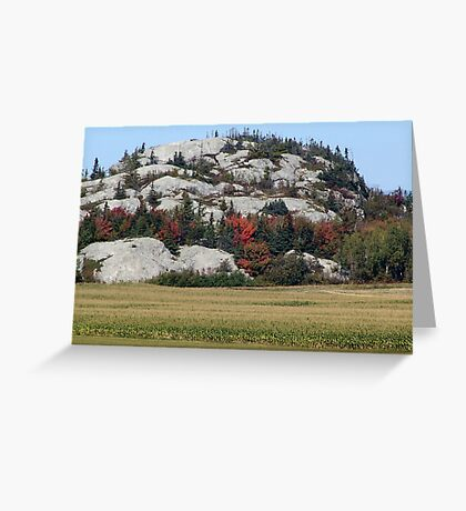 Grass,Trees and Granite Greeting Card