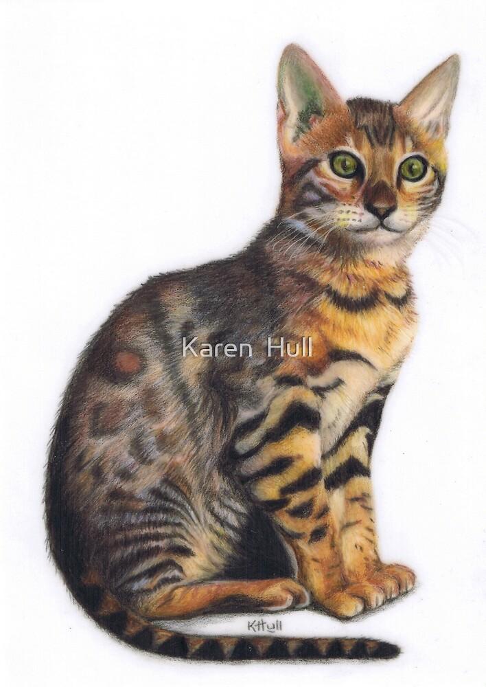 Bengal Kitten by Karen  Hull