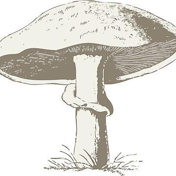 Magic Mushroom by SourPeach