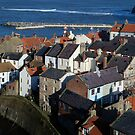 Staithes, North Yorks.  Rooftops by dougie1