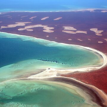 """Shell Beach"" Shark Bay, Western Australia by wildimagenation"