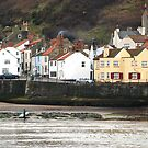 The Captain Cook inn, at Staithes, North Yorkshire by dougie1