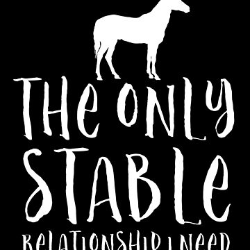 The only stable relationship I need Horse or Pony (in white) by jazzydevil