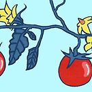 Tomatoes by Vilela Valentin