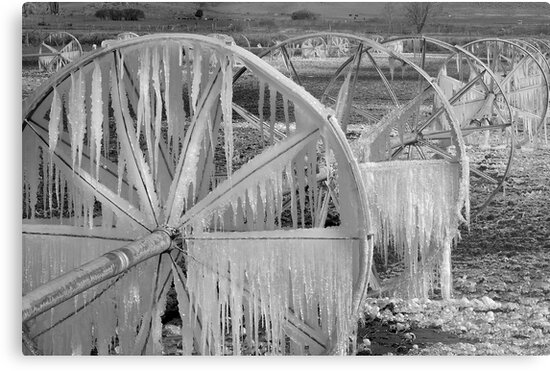 Frozen Wheels B&W by Dan Sweeney