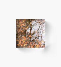 Autumn puddle Acrylic Block