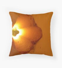 way beyond the pale Throw Pillow