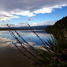 Blue Lagoon  by Hayley Watson