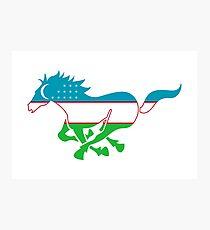 Flag Karabair of Uzbekistan Photographic Print