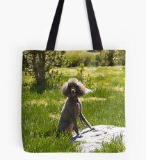 Coco Chanelle Tote Bag