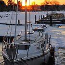 Frozen Sail by Debbie Stobbart