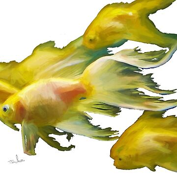Gold Fish by Tom Sachse with background change option by TSachse