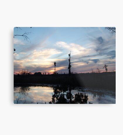 Bird Clouds at Sunset Metal Print