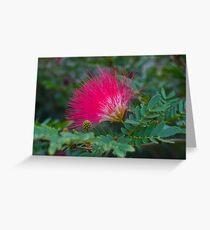 Pink Pom Pom Greeting Card