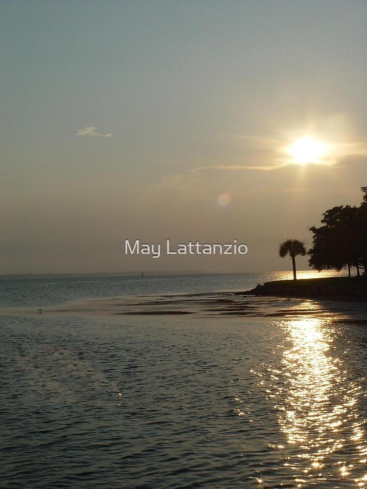 Sunset at Cherry Street by May Lattanzio