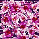 Orchideen Chaos von creativevibe