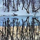 Mirrored by Jamie Lee
