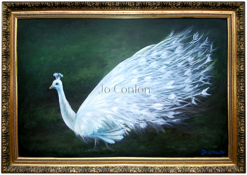 White Peacock by Jo Conlon