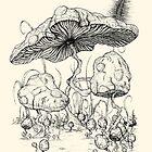 Mario Mushroom Typologies by TenkenNoKaiten