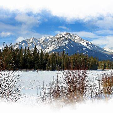 Scenic Cascade Mountain - Banff Alberta by NaturePrints