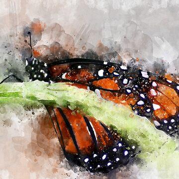Butterfly Watercolor by MrColgate