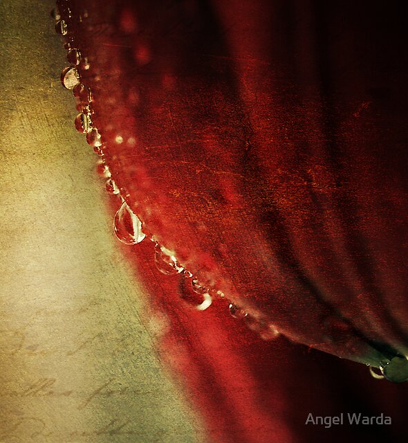 tears may fall... by Angel Warda