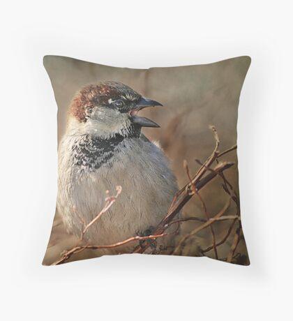 Sparrow At The Drive-Thru Throw Pillow