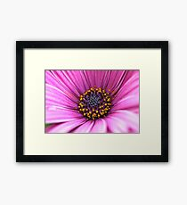 Lady in Pink Framed Print