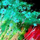 Flower Songs by Linda Callaghan