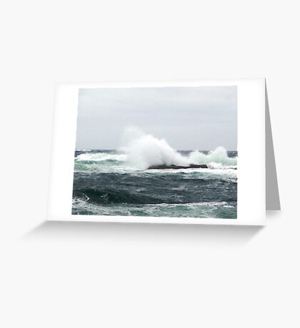 Shoot and get Drenched Greeting Card