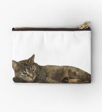 Cat Sleeping Studio Pouch