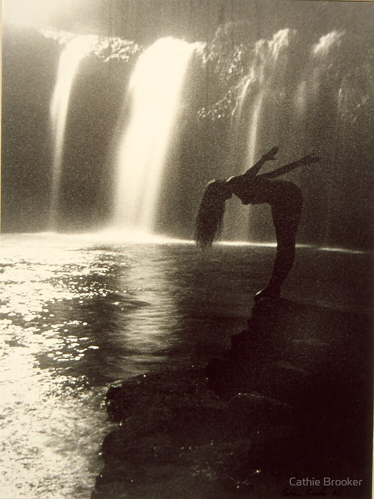 Water Fall by Cathie Brooker