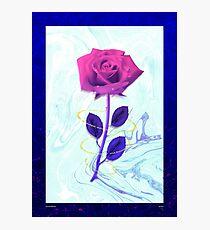 Arien Rose Photographic Print