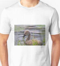 Cygnet Treats Unisex T-Shirt