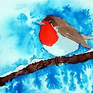 The Winter Robin by Pat  Elliott