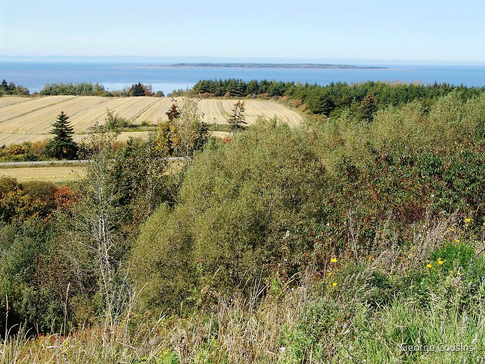 Rural Quebec Farm (2) by George Cousins